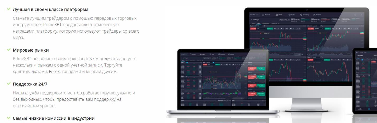 торговая платформа prime xbt